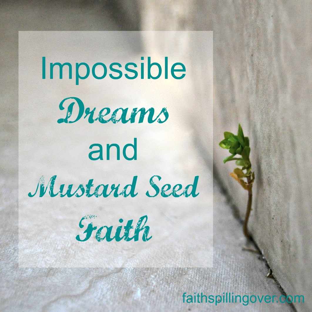 impossible dreams and mustard seed