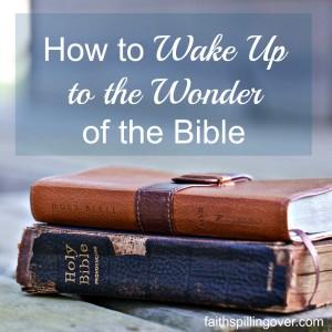wake up to wonder 2