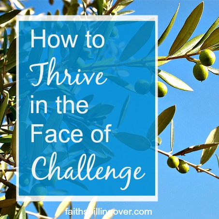 Even in the midst of challenge, you can become a person who thrives no matter what. Plant yourself on the Rock.