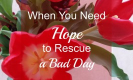 When You Need Hope to Rescue a Bad Day