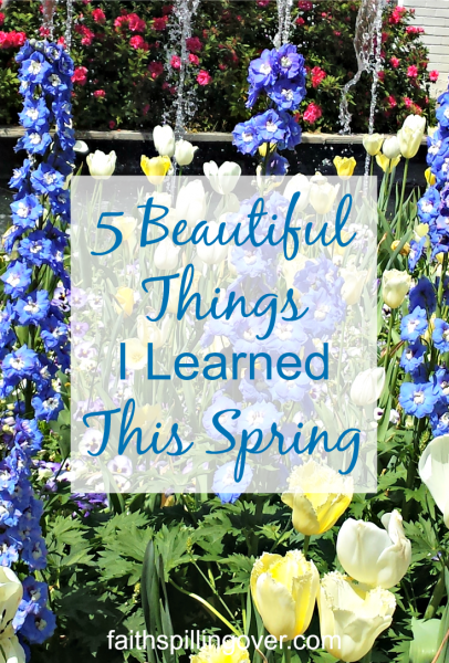 Each day is a 24 hour gift from God, with opportunities to learn and grow. I'm celebrating spring by sharing five things I'm learning make life happier.