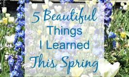 5 Beautiful Things I Learned This Spring