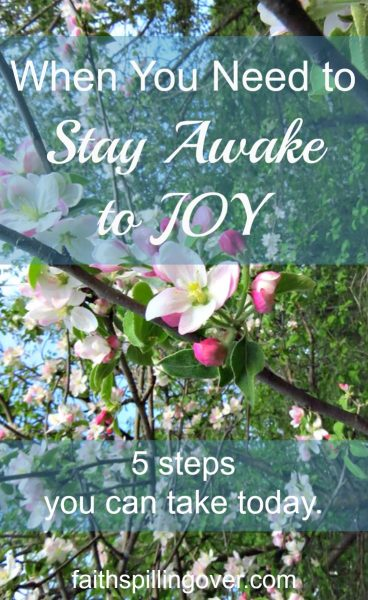 Sometimes we live life asleep to the joy God has for us, but His abundance is always within our reach. 5 steps you can take today to wake up to more joy.