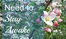 When You Need to Stay Awake to Joy