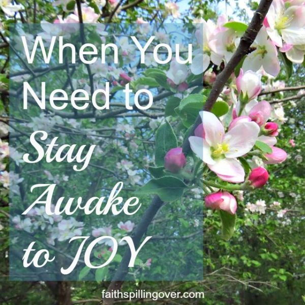 Sometimes we live life asleep to the joy God has for us, but His abundance is always within our reach. Here are 5 steps you can take today to wake up to more joy.
