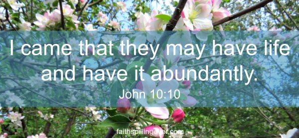 Sometimes we live life asleep to the joy God has for us, but His abundance is always within our reach. Scripture.
