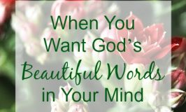 When You Want God's Beautiful Words in Your Mind