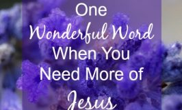 One Wonderful Word When You Need More of Jesus