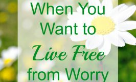 When You Want to Live Free from Worry
