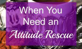 When You Need an Attitude Rescue