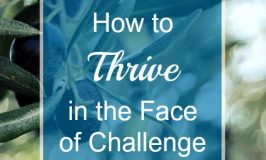How to Thrive in the Face of Challenge