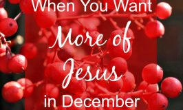 When You Want More of Jesus in December