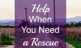 Help When You Need a Rescue