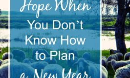 Hope When You Don't Know How to Plan a New Year