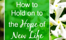 Even though God's people celebrate new life at Easter, maybe you're barely hanging on by a thread? 3 Things can help you hold on to hope in hard situations.