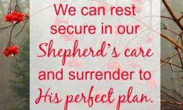 Encouragement When You Struggle to Trust God