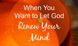 When You Want to Let God Renew Your Mind