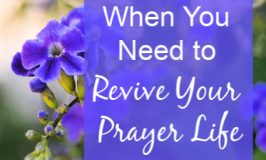 Has your prayer life fallen into the doldrums? Remember God loves and delights in you. Try these 3 ways to revive your prayer life and grow closer to God.