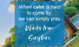 4 Steps to Pray Scripture when life turns crazy and you need calm. God's Word offers healing balm to stressed souls and simple words to pray. #prayer #spiritualgrowth #prayertips #calm