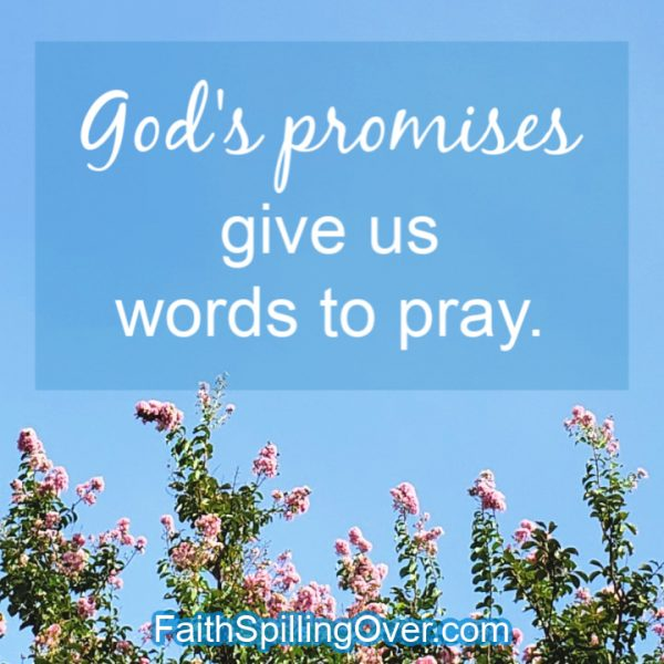 This list of God's greatest promises will encourage your faith today. You'll find a promise for your situation and a prayer to go along with it. #prayer #promises