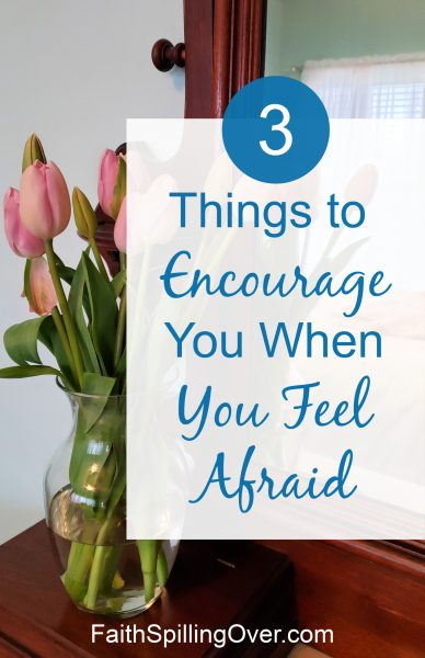 When you feel afraid, God's touch will strengthen you. His Word will calm your fears. 3 truths from Scripture to help you find new #courage. #faith #faithoverfear #fear